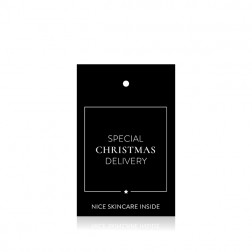 "'Special Christmas Delivery"" Tag 10 st"