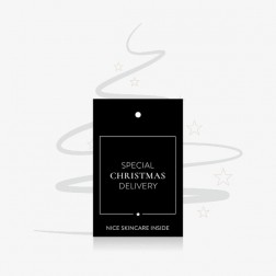 """'Special Christmas Delivery"""" Tag 10 st"""