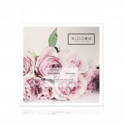 IK Blooom Showcard 1st