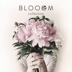 IK Blooom Collection